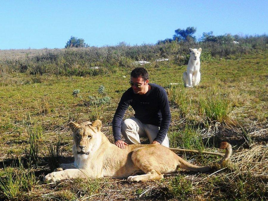 viaggi e terrorismo animali